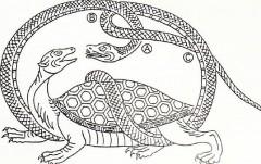 玄武の模式図