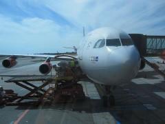 これからこの飛行機に乗る