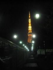 芝公園の奥に見える東京タワー