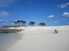 ホテル前の砂浜に出てみる
