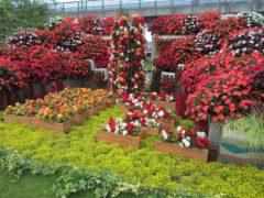 さまざまな庭園の展示