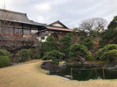 純日本風の庭園