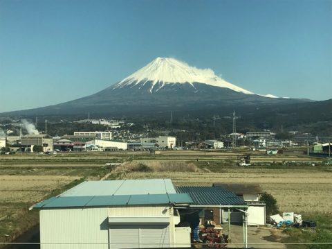 静岡県内でようやく…