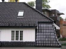 Unique Roof Styles