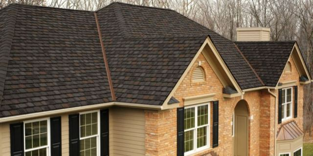 Shingles facts
