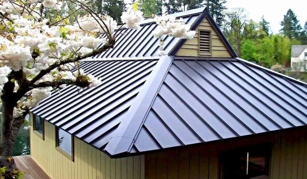 House colors with brown roof
