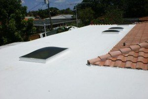 Roof coating and skylights