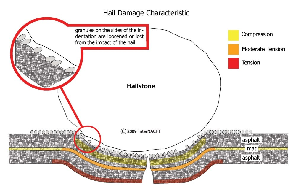 medium resolution of anatomy of hail damage to shingle