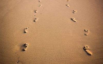 Leaving Tracks – Making an Impact Bigger than Yourself