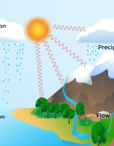 also water cycle rh rookieparenting