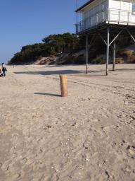 Strand 4