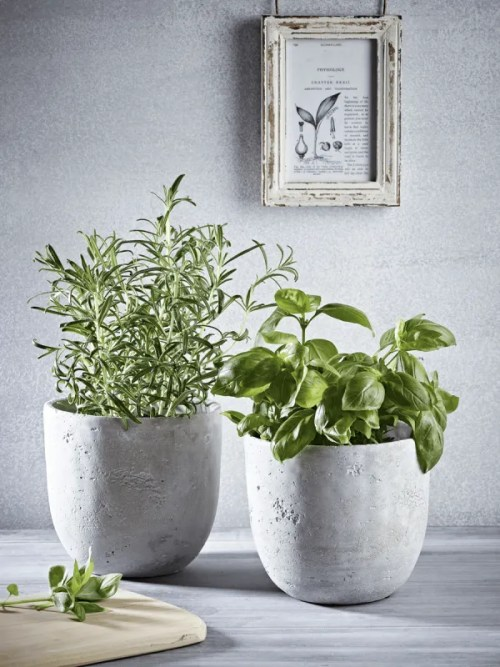 Roomy Home concrete interior luxe Cox and Cox concrete planters