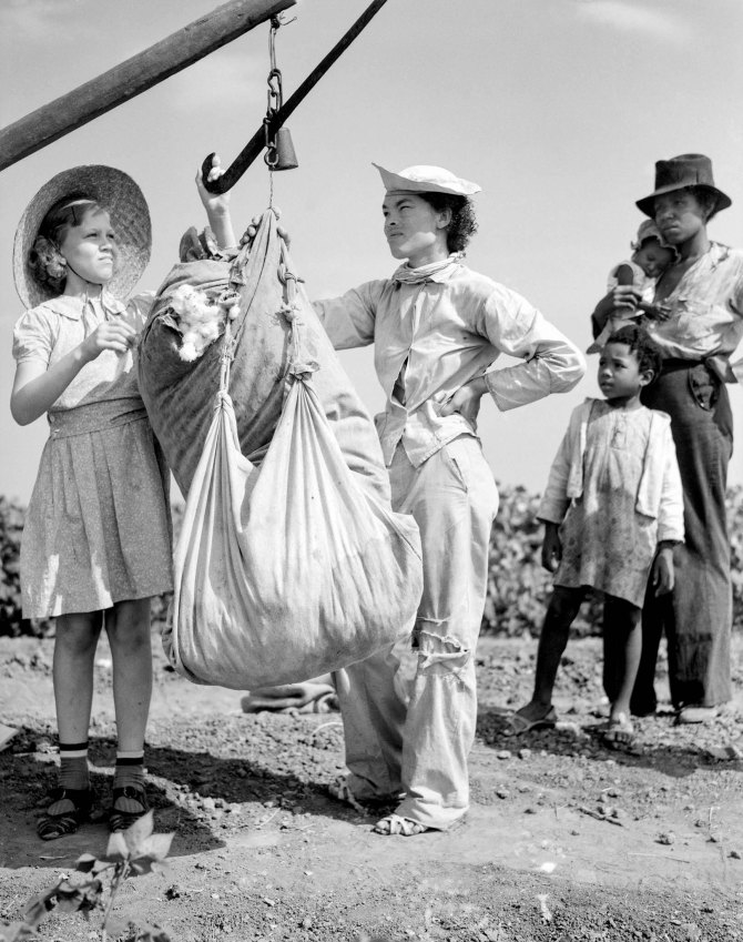 Plantation owner's daughter checks weight of cotton. Kaufman County, Texas. 1936.