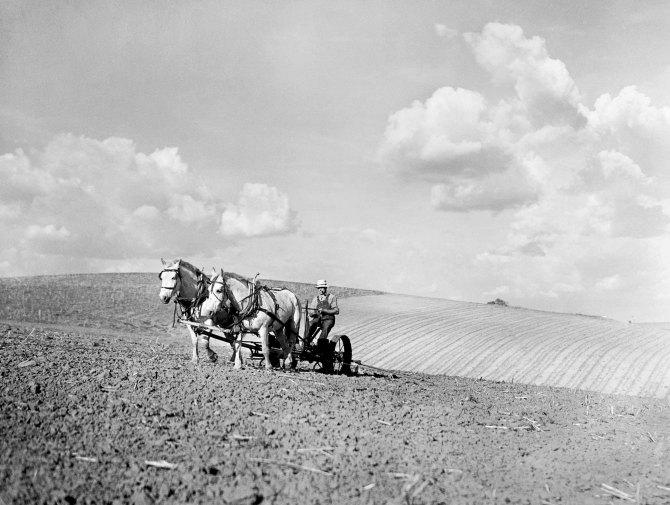 Farmer. Lancaster County, Nebraska. May 1936.