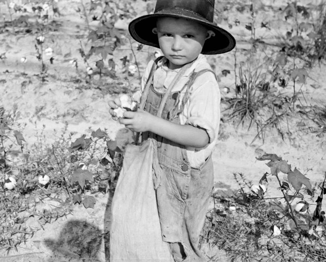 Son of a cotton sharecropper. Lauderdale County, Mississippi. 1935.