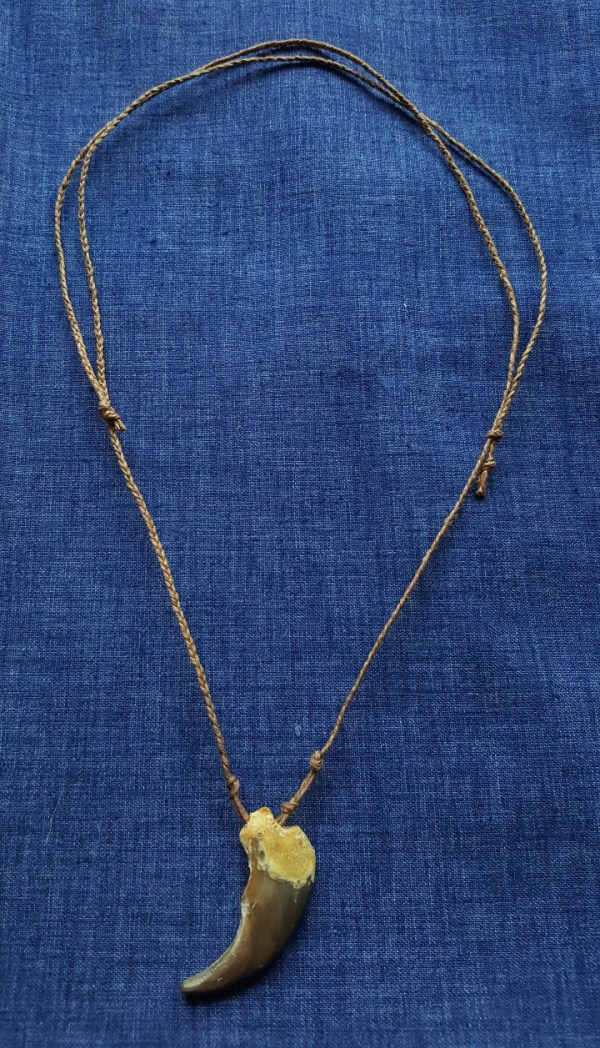 bear claw necklace chocolate braided cord