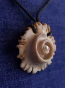 spiral of life shed antler carving