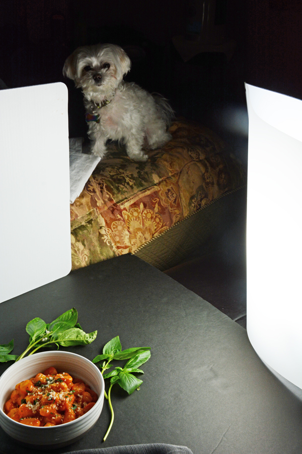 maltese Trader Joe's Gnocchi