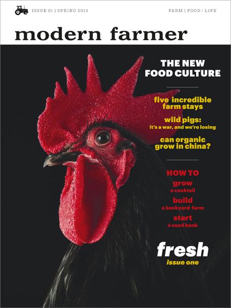 Modern Farmer Magazine  Root Simple
