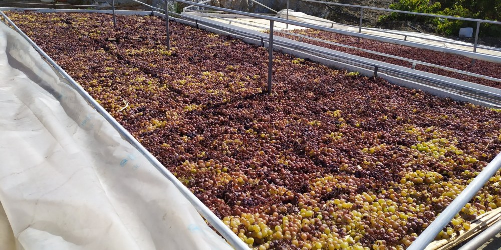 Looking down on grape-drying beds; feel like you get close to the wine-making process.