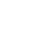 Funding: The Irish Sports Council
