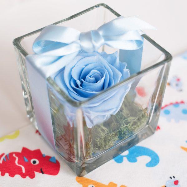 cubetto di vetro con dentro una rosa stabilizzata azzurra su letto di muschio verde. Con nastro azzurro attorno. Su bavaglino con rinoceronti colorati.