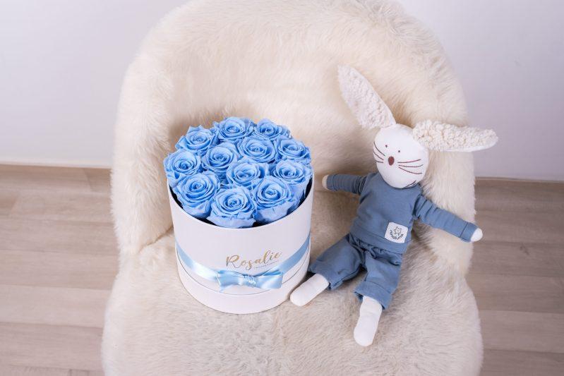 scatola tonda con 12 rose stabilizzate azzurre baby accanto a pupazzo coniglio su sedia bianca