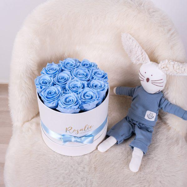 scatola tonda con 12 rose stabilizzate azzurre accanto a peluche a forma di coniglio