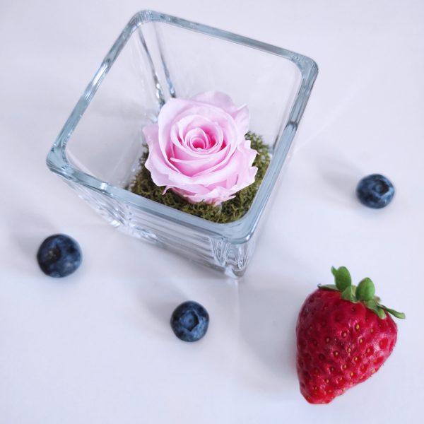 mini rosa stabilizzata di color rosa accanto a mirtilli e fragola