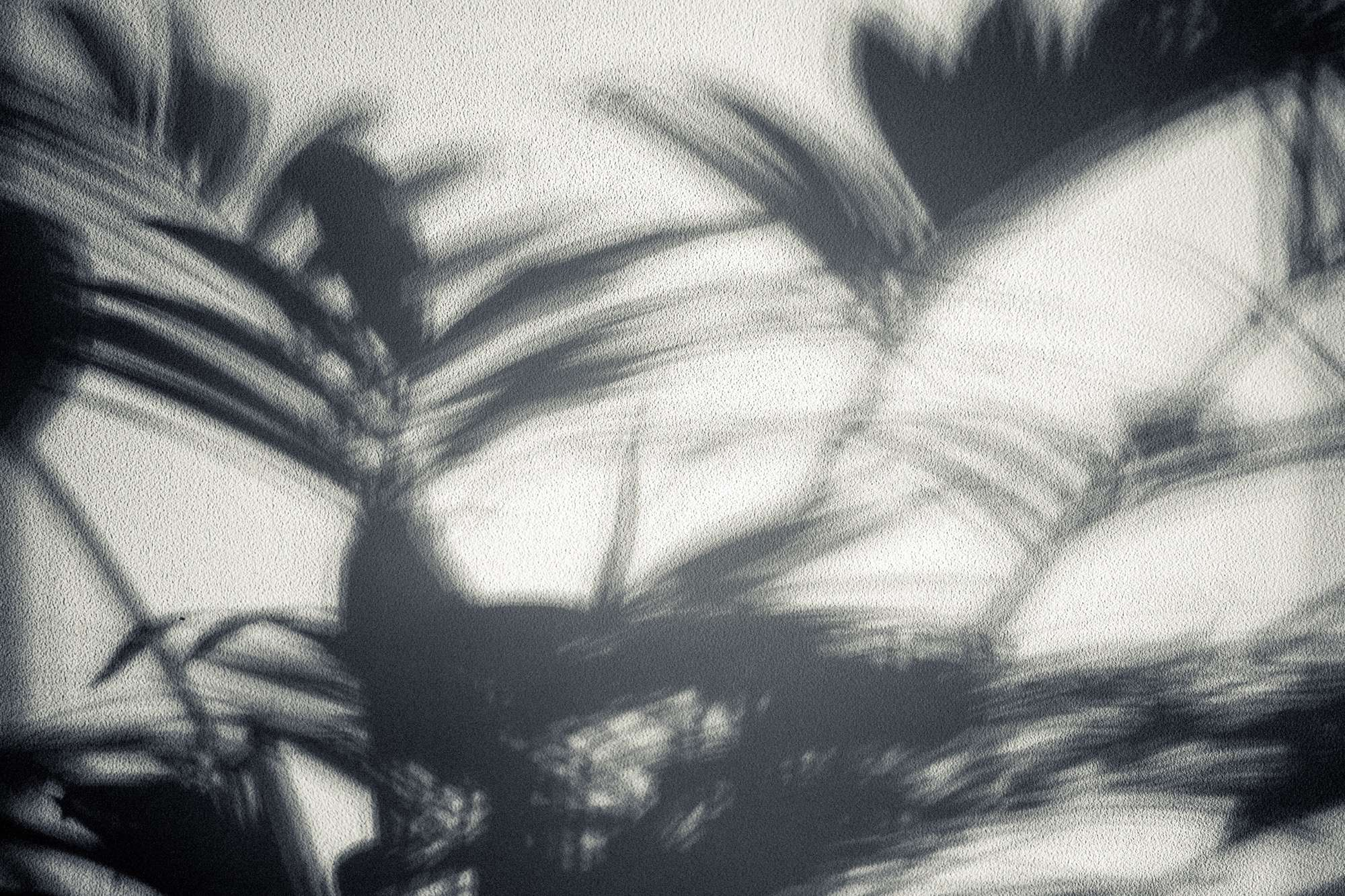 Shadows of my home - Rosanne Dubbeld Photography