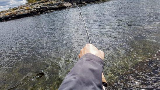 Bjørn Tore Kjølholt fisker sjøørret.