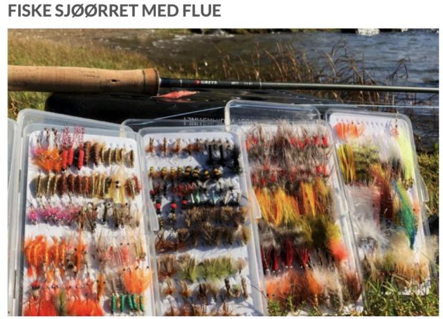 Bjørn Tore Kjølholt sine sjøørret fluer.