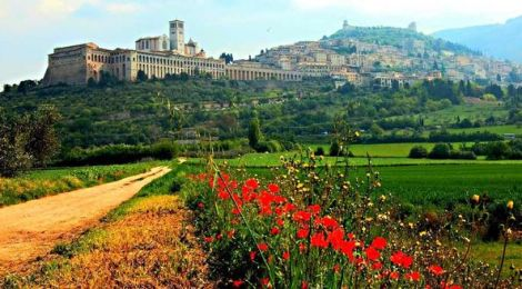 """""""ROSEA & WORLD NOW ' Umbria  (ITALY) """" - ROSALBA SADDLE"""