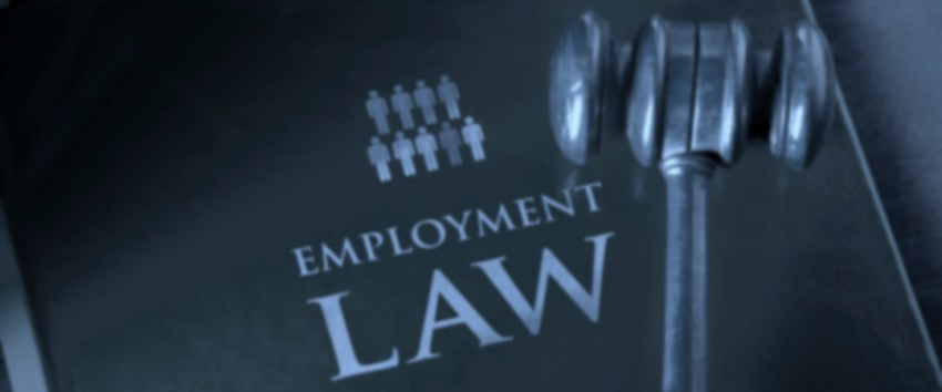 Employment - Roseanne Charles - Lawyer