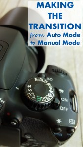 Making the Transition From Auto Mode to Manual Mode | http://www.roseclearfield.com