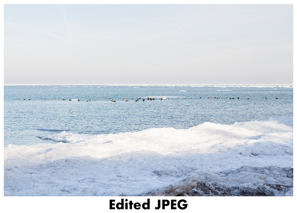 JPEG vs RAW - Edited JPEG | http://www.roseclearfield.com