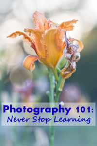 Photography 101: Never Stop Learning | https://www.roseclearfield.com