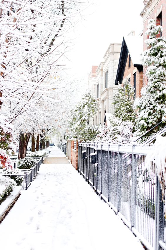 Winter Photography Inspiration - Picturesque Chicago Winter | https://www.roseclearfield.com