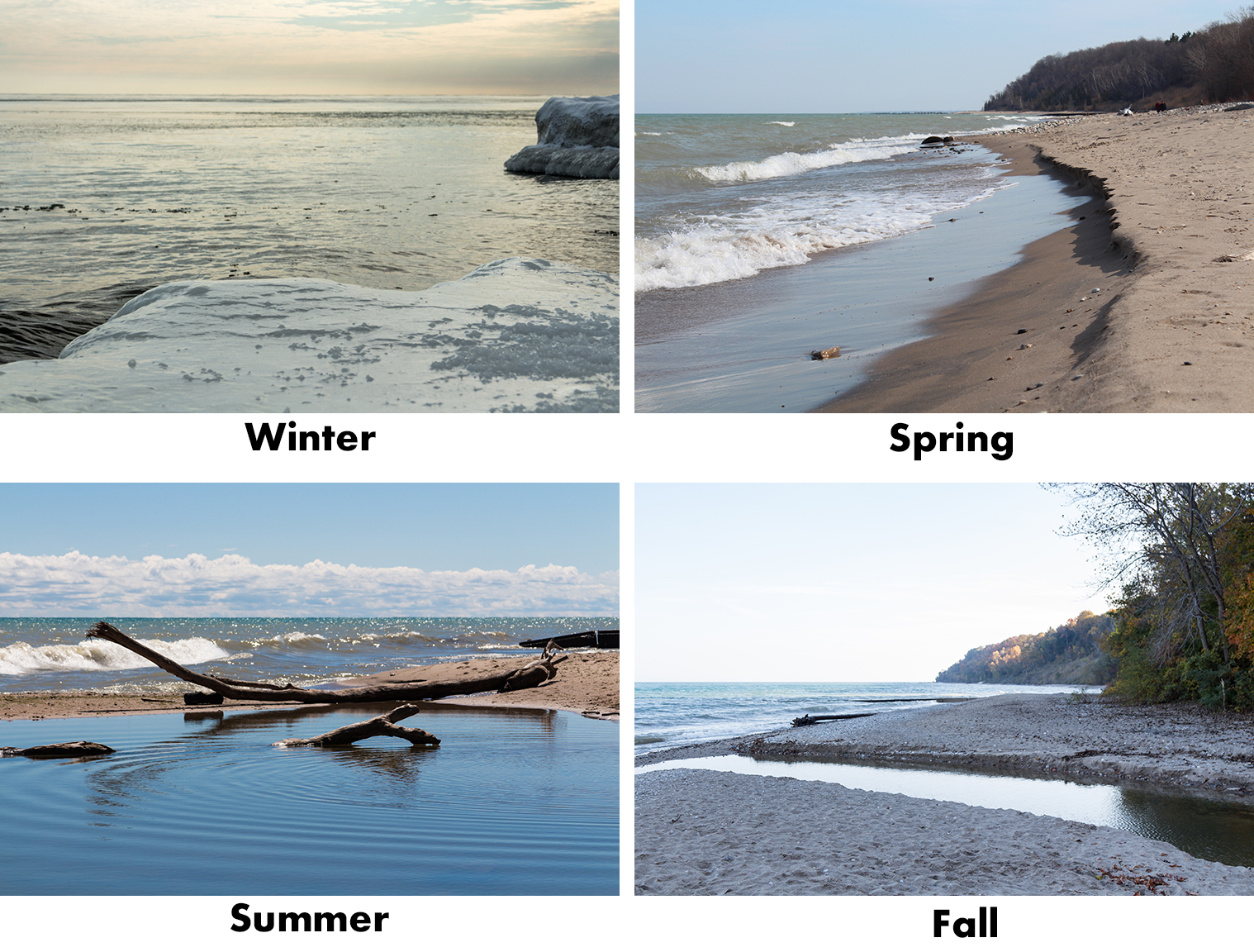 Beach in Four Seasons | http://www.roseclearfield.com