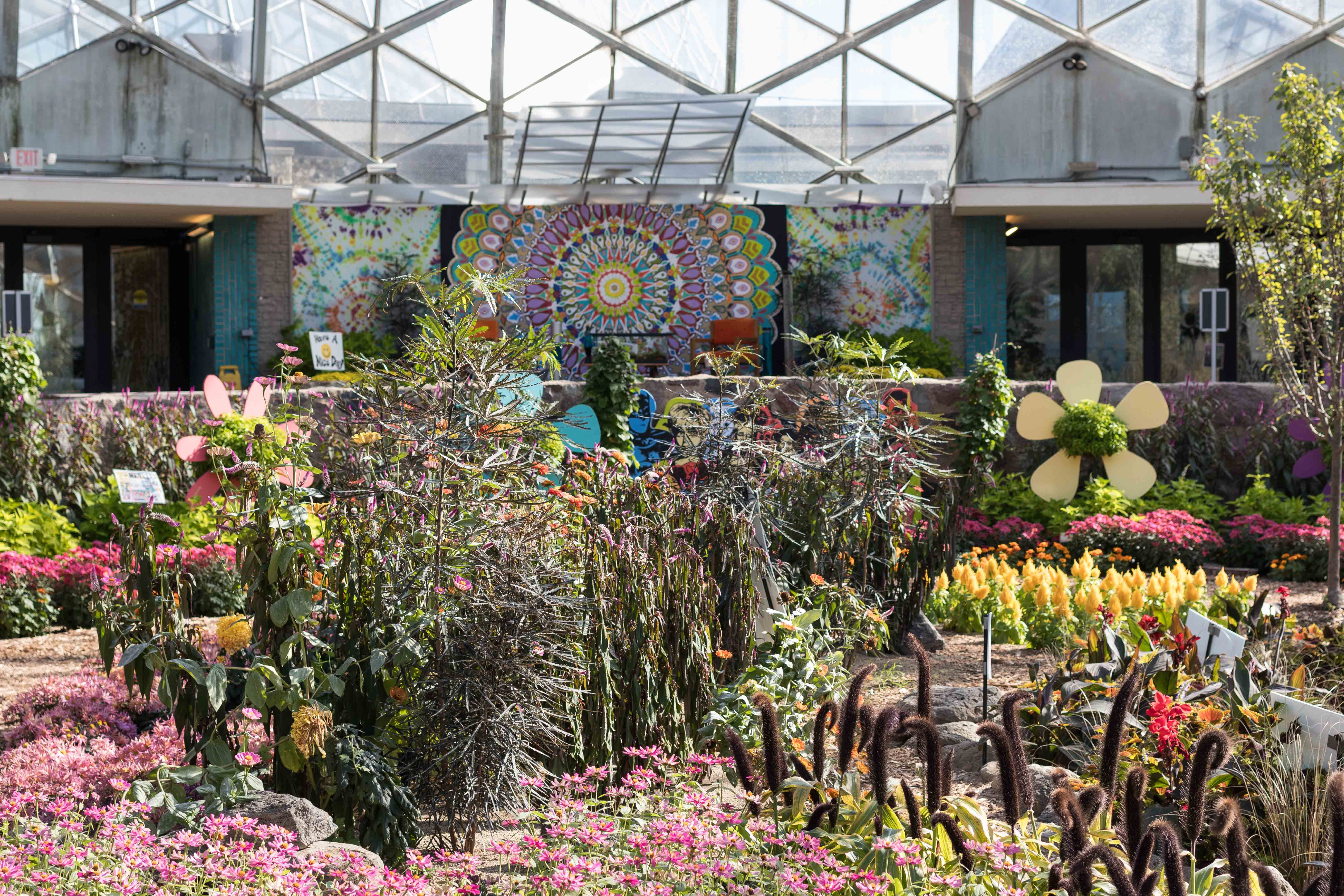 Mitchell Park Domes Flower Power Fall Floral Show   http://www.roseclearfield.com