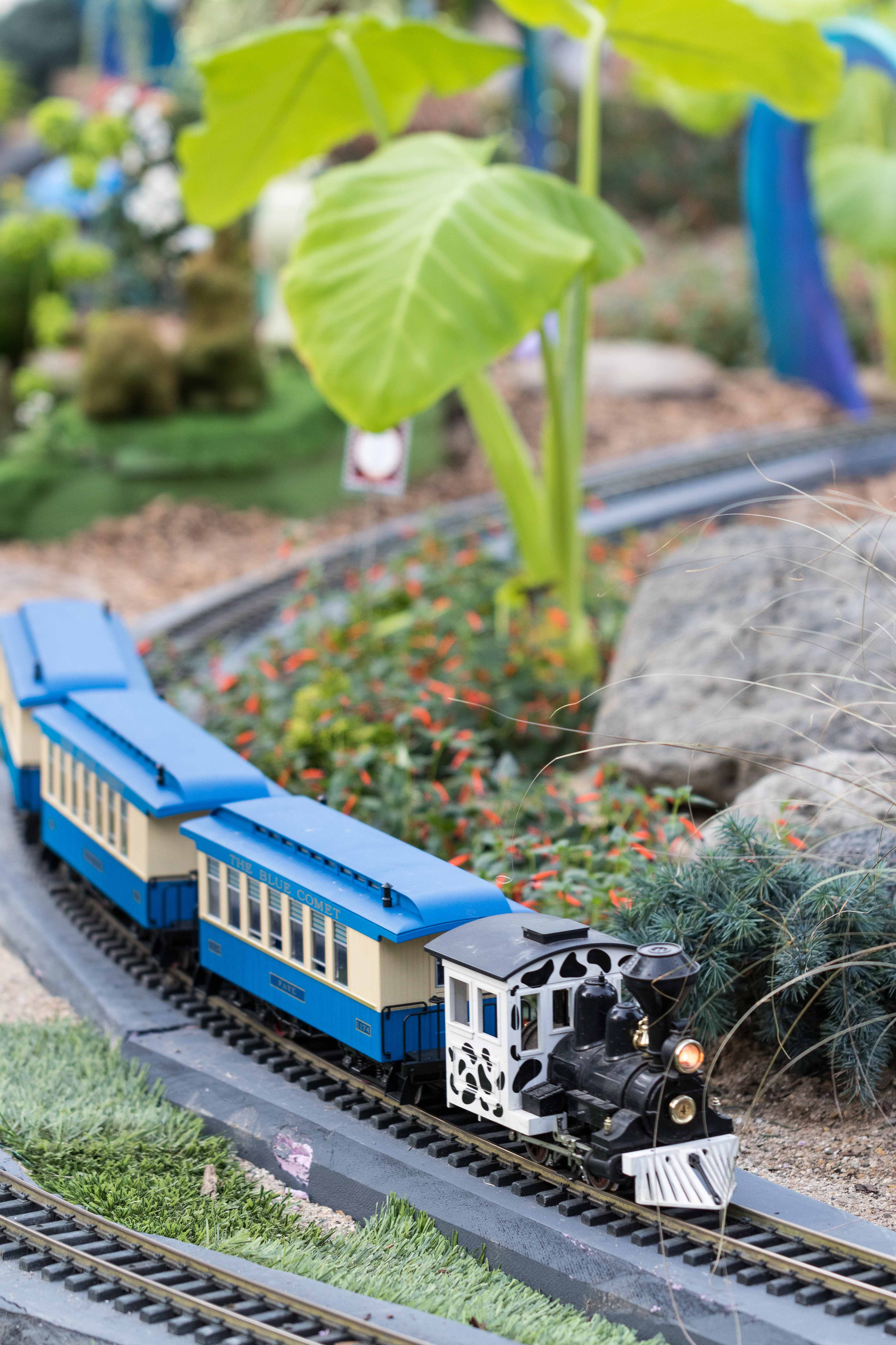 Railroad to Wonderland Garden Train Show at the Domes | http://www.roseclearfield.com