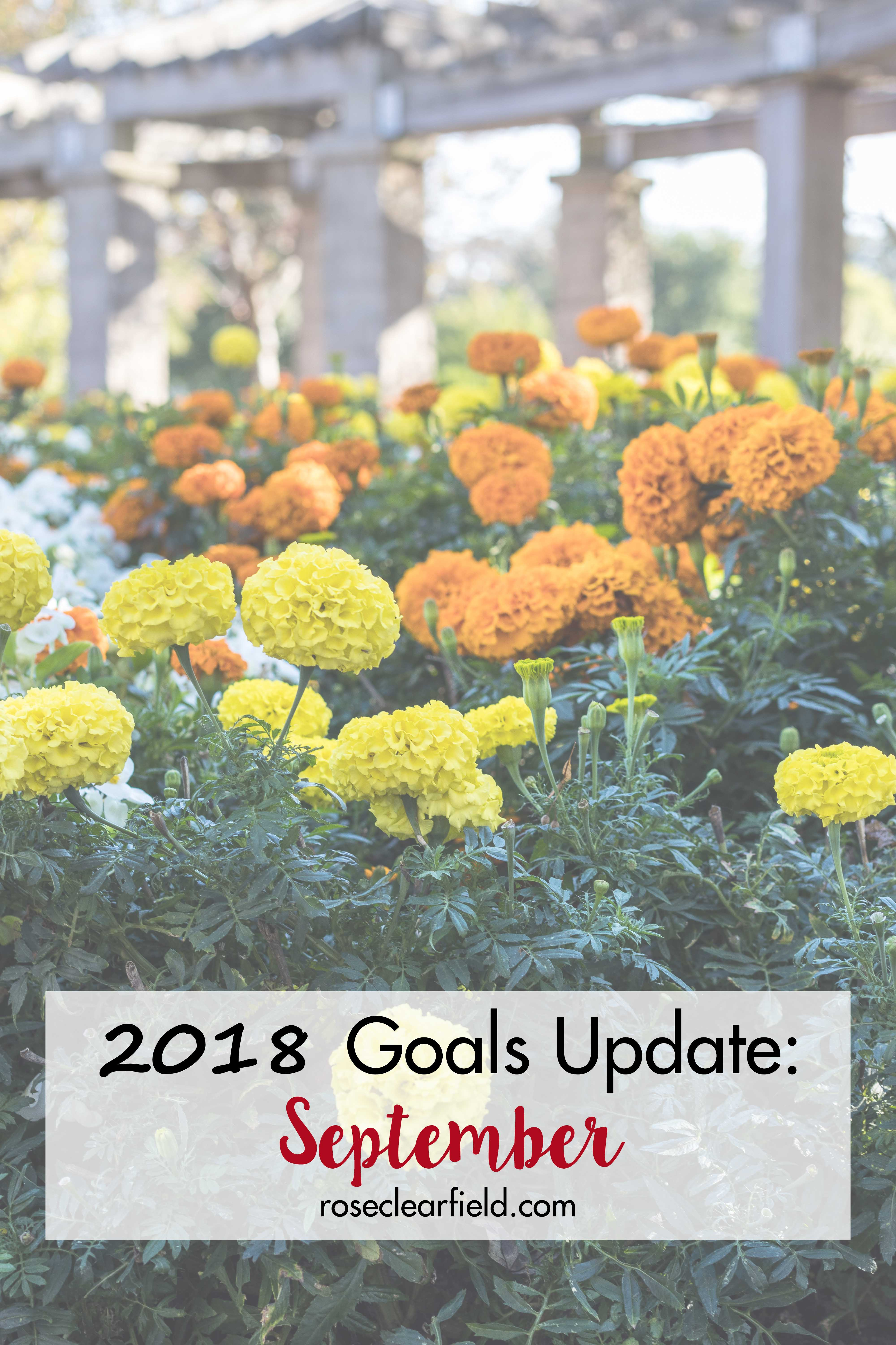 2018 Goals Update: September | https://www.roseclearfield.com