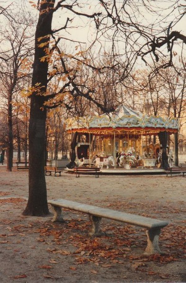 Fall Photo Inspiration - Carousel in the Fall | https://www.roseclearfield.com