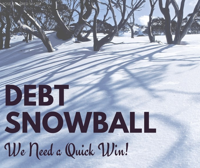 Debt snowballs make for quick wins. | Rose Colored Water