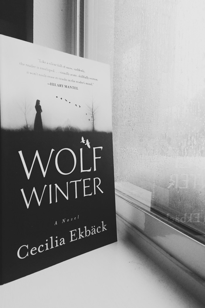 This historical fiction mystery novel may by your cup of tea. Here's my review of Wolf Winter by Cecilia Ekback | Rose Colored Water