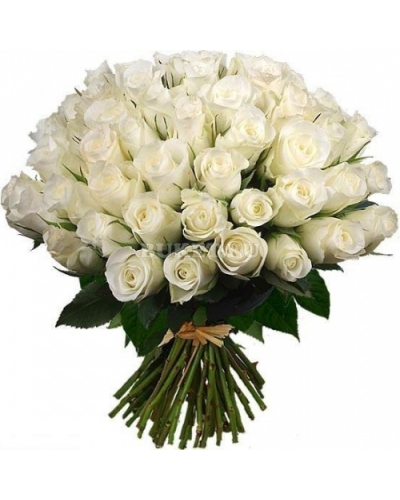 50 Long Stem White Rose Bouquet