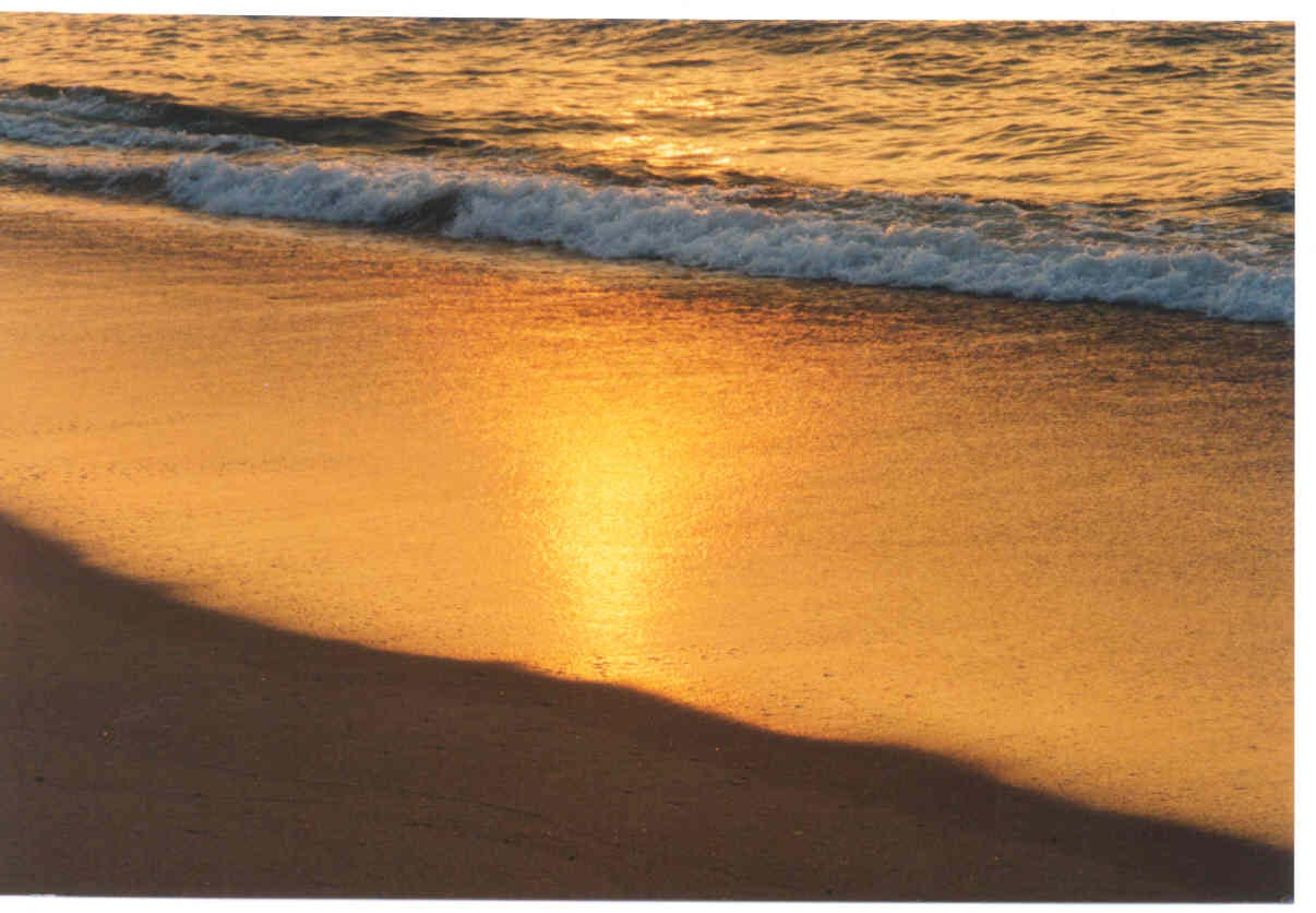 Audio Sample photo image of radiant light shining from the water at the edge of the land on the beach