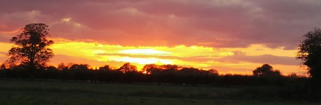 Brrrr it's chilly out there but couldn't resist the stunning sunset this evening....