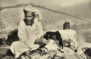 nomad man wearing turban feeds goat from hand