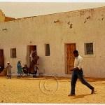 an oasis medina ksar